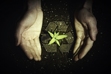 save the planet: Human hands holding a green sprout and ecology symbols Stock Photo