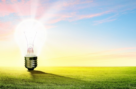 Image of light bulb against nature background  Ecological concept photo