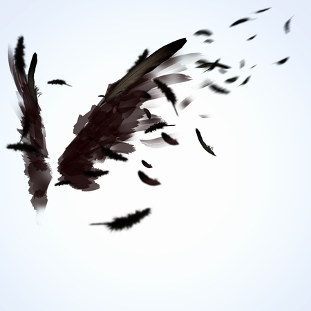 dark angel: Abstract image of black wings against light background