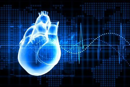 Virtueel beeld van menselijk hart met cardiogram Stockfoto