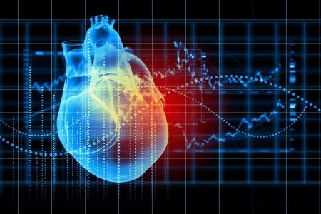 Imagen virtual del corazón humano con el cardiograma Foto de archivo - 20149705