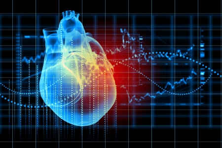 cardiac care: Virtual image of human heart with cardiogram Stock Photo
