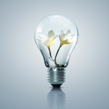 Electric light bulb and flower inside it as symbol of green energy photo