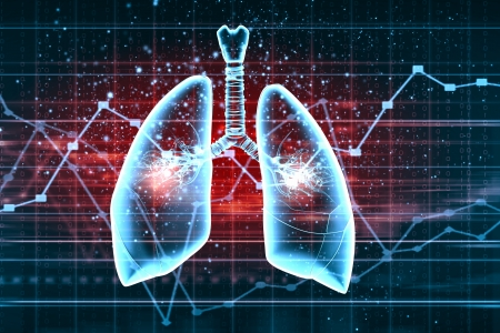 Schematic illustration of human lungs with the different elements on a colored background  Collage  illustration