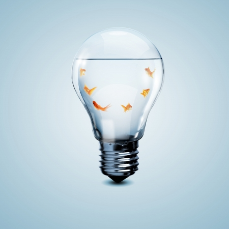 Gold fish in water inside an electric light bulb Stock Photo - 20207229