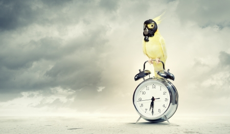 Image of yellow parrot in gas mask sitting on alarm clock  Ecology concept Stock Photo - 20286108