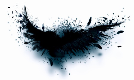Abstract image of black wings against light background 版權商用圖片 - 20559182