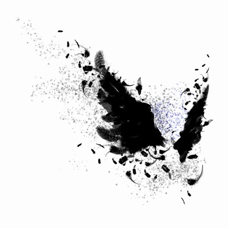 mysticism: Abstract image of black wings against light background