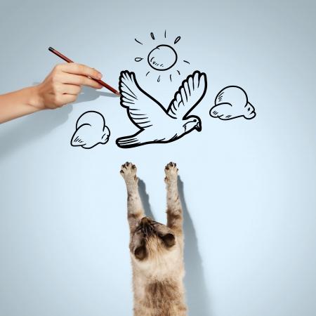 Image of siamese cat catching drawn bird photo