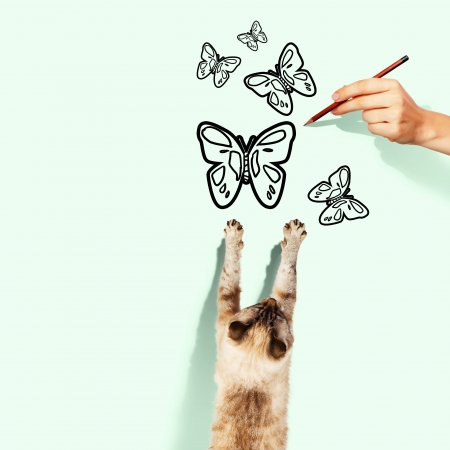 frisky: Image of siamese cat catching drawn butterfly Stock Photo