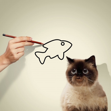mew: Image of siamese cat catching drawed fish Stock Photo