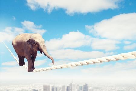 空の高いロープの上を歩くゾウのイメージ