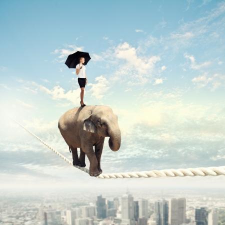 animales de circo: Imagen de elefante que camina en la cuerda de alta en el cielo