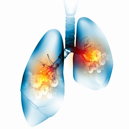 bronchus: Illustration of human lungs with cog wheel mechanisms Stock Photo