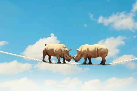 Image of two rhino struggling on rope high in sky Фото со стока - 21211106