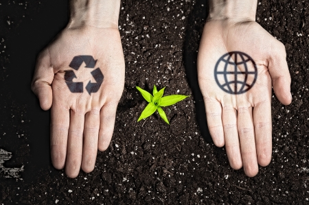 Human hands holding a green sprout and ecology symbols Stock Photo