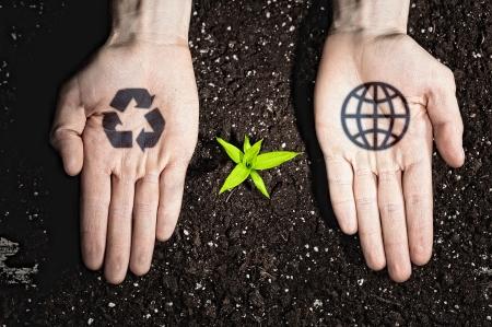 contaminacion ambiental: Manos humanas que sostienen un brote verde y s?mbolos ecolog?a