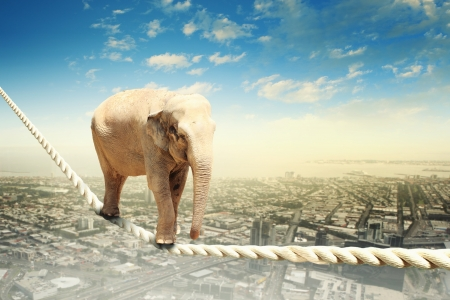 Image of elephant walking on rope high in sky photo