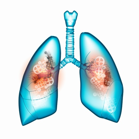 respiratory tract: Illustration of human lungs with cog wheel mechanisms Stock Photo