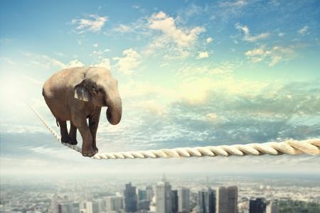 空の高ロープの上を歩くゾウの像