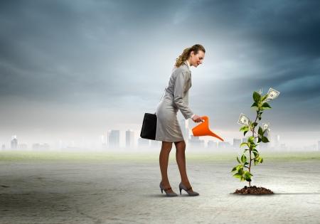 돈 나무 통화 개념을 물 비즈니스 여자의 이미지 스톡 콘텐츠