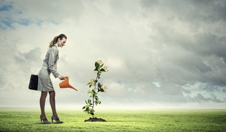 watering plant: Image of business woman watering money tree  Currency concept