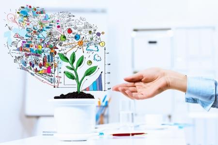 Close-up beeld van de menselijke hand en pot met geld boom Stockfoto