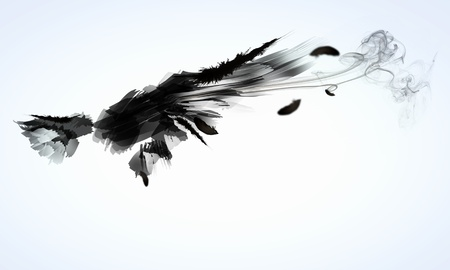 Abstract image of black wings against light background 版權商用圖片 - 21789737