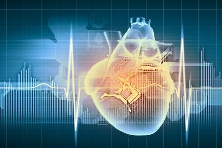 Virtual image of human heart with cardiogram photo