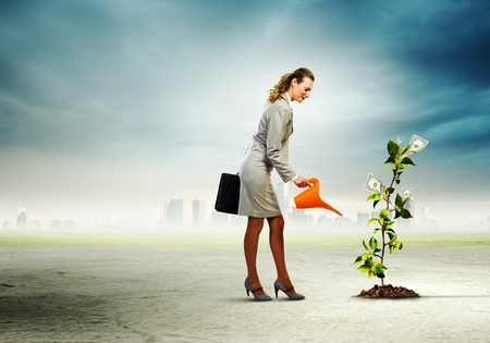 pot of money: Image of businesswoman watering money tree with pot