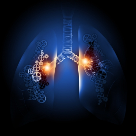 Human lungs with mechanisms  Health and medicine photo