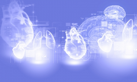 Digital image of human heart  Background or wallpaper photo