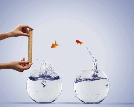 Aquarium with gold fish jumping out of water photo