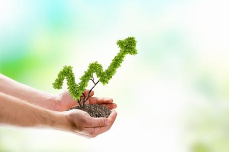 productividad: Imagen de manos humanas sosteniendo la planta en forma de flecha