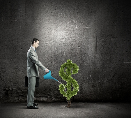 Image of businessman watering money tree inshape of dollar symbol photo