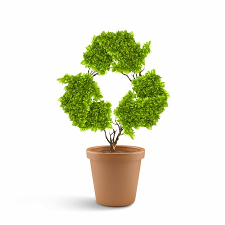 Image of plant in pot shaped like recycle symbol photo