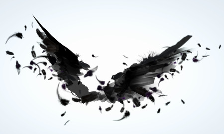 crow: Abstract image of black wings against light background