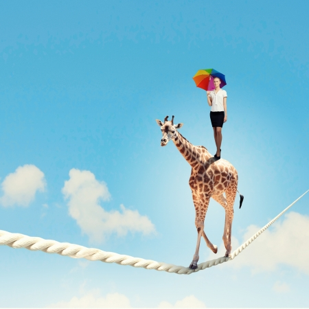 Image of giraffe walking on rope high in sky photo