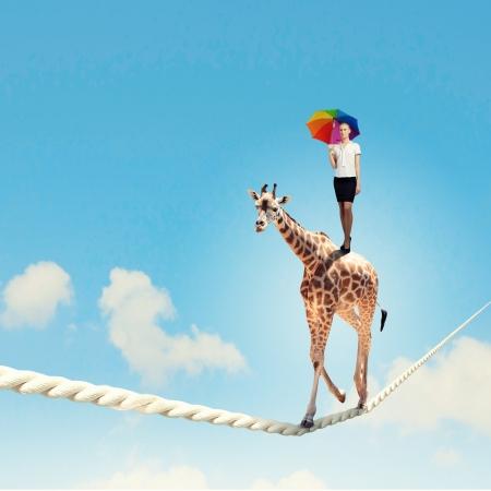 circus animals: Imagen de la jirafa camina en la cuerda de alta en el cielo