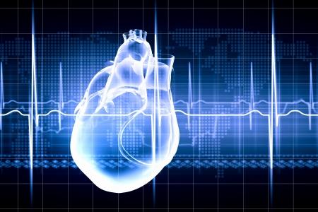 Imagem virtual do coração humano com eletrocardiograma Foto de archivo - 23782122