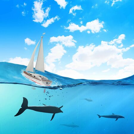 Floating yacht and dolphins swimming under water photo
