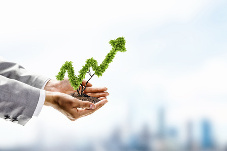 business growth: Image of human hands holding plant shaped like arrow Stock Photo