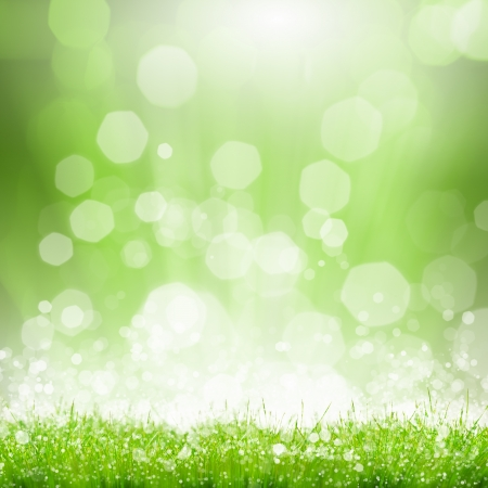 glare: Green summer meadow with sun glare and rays