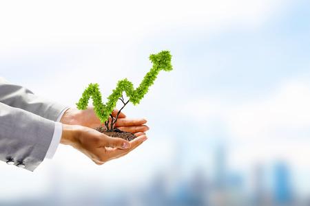 tree growing: Image of human hands holding plant shaped like arrow Stock Photo