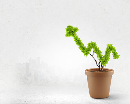 pot of money: Plant in pot shaped like graph  Wealth concept