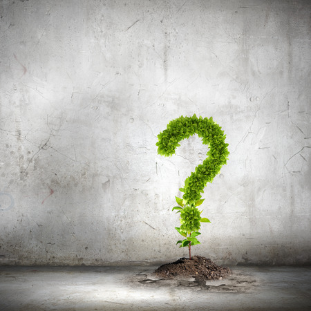 Image of green plant shaped like question mark photo
