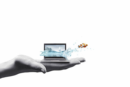 Close up of laptop with fish jumping out from screen photo