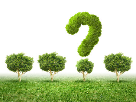 Conceptual image of green plant shaped like question mark photo