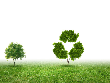Conceptual image of green plant  Protect our planet photo