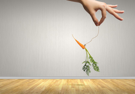 dangling: Close up of hand holding stick with carrot dangling on rope